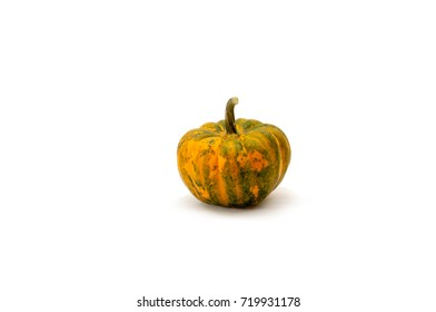 One pumpkins on a white background