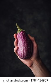 One purple aubergine in hand on dark cconcrete background