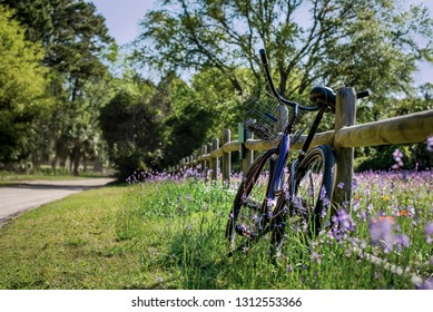One purple beach cruiser bike with basket rests on a wood split rail fence in a field of orange and purple wildflowers on a sunny day. Lifestyle and leisure concept.