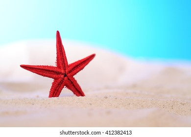 One red starfish standing on sand against blue background