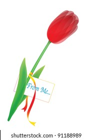 one red tulip with card and color tape in the white background