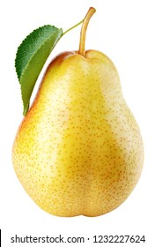 One red yellow pear fruits with green leaf isolated on white with clipping path. Full depth of field.