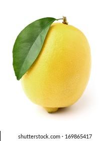 One ripe lemon with leaf