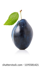 One ripe prune fruit isolated on white background