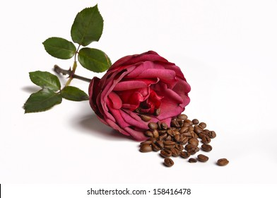 one rose and coffee beans