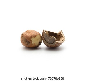 One shelled hazelnut with hollow shell isolated on white background
