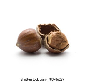 One shelled hazelnut inside a shell and unshelled one isolated on white background