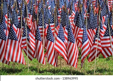 One Thousand Flags on Memorial Day