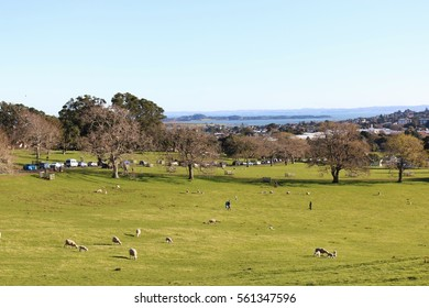 One Tree Hill Park Domain, Auckland, New Zealand