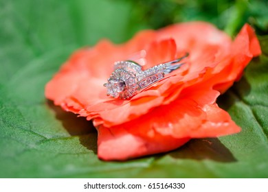 one wedding ring sitting on a red flower with green leaves
