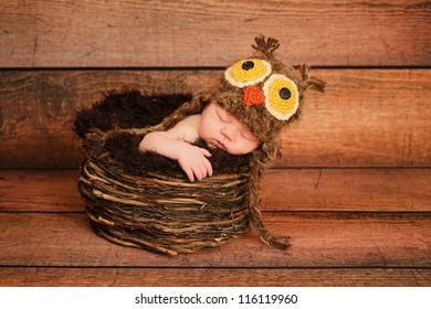 One week old newborn girl wearing a brown owl hat and sleeping in a nest.