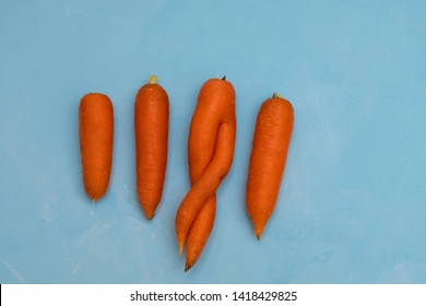 One weird ugly carot among other normal carrots on blue background. Zero waste concept.