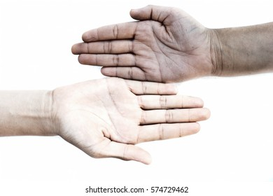 One White and One black Hand isolated on white. Concept of Racism.