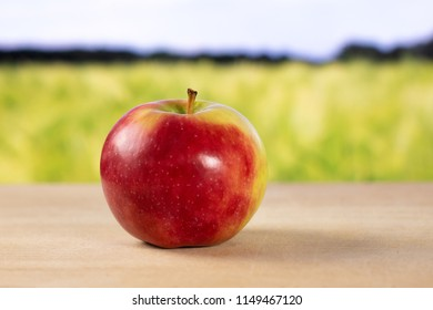 One whole fresh red apple james grieve variety with green wheat field in background