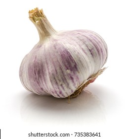 One whole garlic bulb isolated on white background