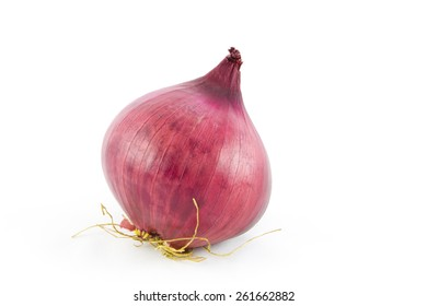 One whole red onion bulb isolated on white background