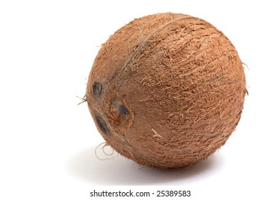 One wonderful coconut isolated  on a white background.
