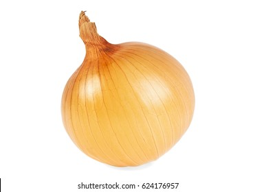 One yellow onion isolated on white background