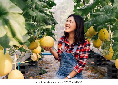 One young beautiful Asian female farmer having happy smile and wearing red checkered shirt while working inside farm agriculture garden
