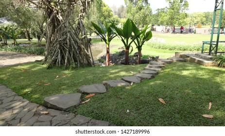 ones of the corner at nusantara flower garden in cisarua, indonesia. nusantara flower garden is one of the largest garden in the world. photo taken in june 2019