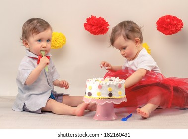 One Year Old Twins Behind Decorated First Birthday Cake Smash The Party