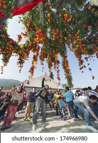 ONG KONG , CHINA - FEB. 02 : Lam Tsuen wishing tree on Feb. 02 , 2014 in Hong Kong. Tourists wrote wishes on joss paper, tied to an orange, then threw them up to hang in to make wish come true.