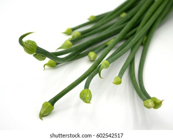 Onion Flower Stem
