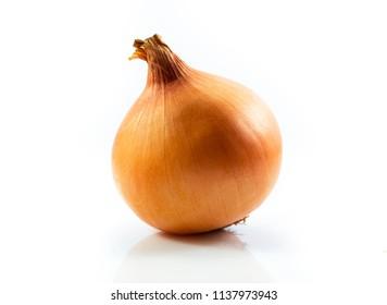 Onion fresh isolated on white background