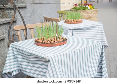 Onion growing ceramic plates located on a restaurant table.