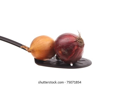 Onion on a spoon against a white background