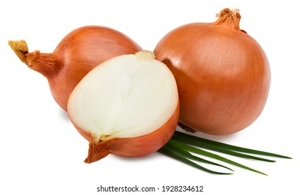 onion with slice and green onion isolated on white background. full depth of field. clipping path