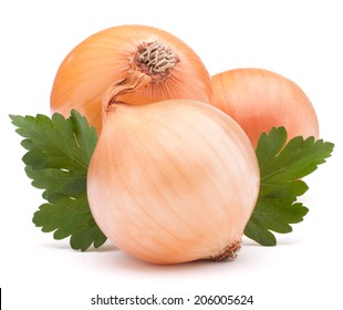 Onion vegetable bulb and parsley leaves still life isolated on white background cutout