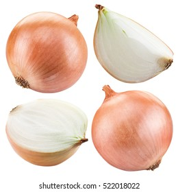 Onion vegetable and onion slices isolated on a white background.