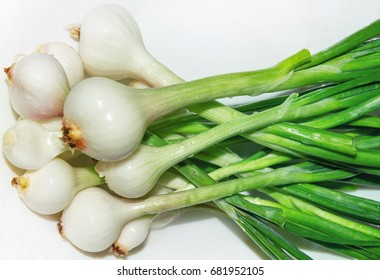 Onions heads with green feathers close-up