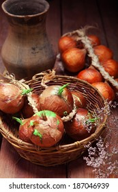 Onions on a wooden board. Rustic background
