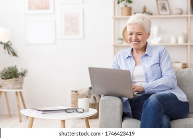 Online Degrees for Seniors. Happy Elderly Woman Study With Laptop At Home, Sitting On Sofa In Living Room, Copy Space