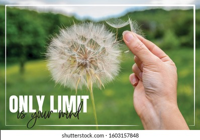 Only limit is your mind. Hand holding Dandelion flower, close up photography, banner design, poster design. Motivational, inspirational, beautiful life quote