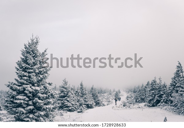 Onset of winter in the Upper Harz
