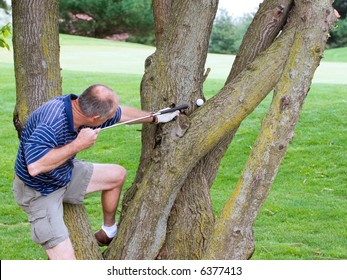Oops! Golfer has landed a ball in the tree, missing the green. He is using his putter like a pool cue, going to strike this one right onto the green.