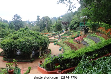 ooty botanical garden The Government Botanical Garden is a botanical garden in Udhagamandalam, near Coimbatore(Ooty)
