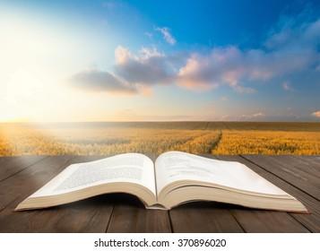 Biblia Abierta Imagenes Fotos De Stock Y Vectores Shutterstock