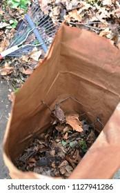 Open bag and rake, chore concept