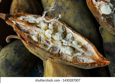 open baobab fruit as new natural food