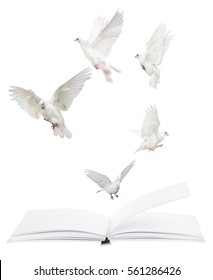 open blank book and flying doves isolated on white background