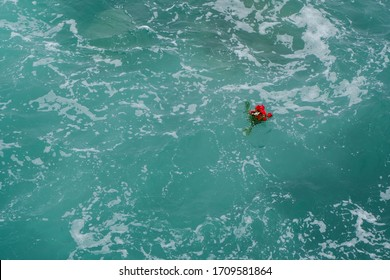 open blue sea and flowers