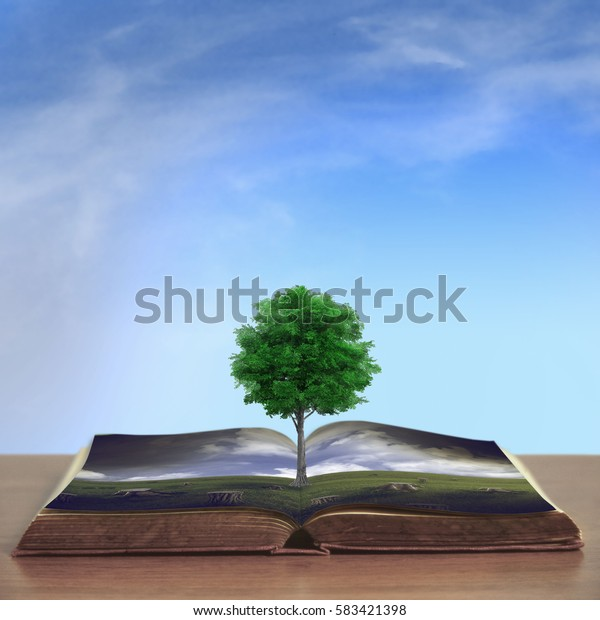 open book with deforestation scene and a live tree