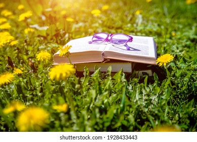 Open book and glasses on the grass among the blooming dandelions