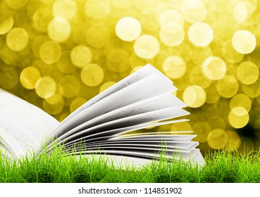 Open book in green grass over yellow sun light. Magic book