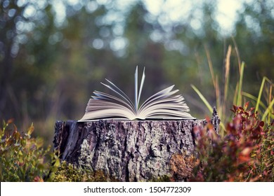 An open book lies on a stump in the forest. Autumn leafing through pages