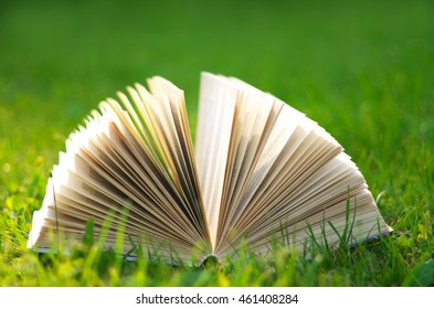 An open book on the green grass in the sun